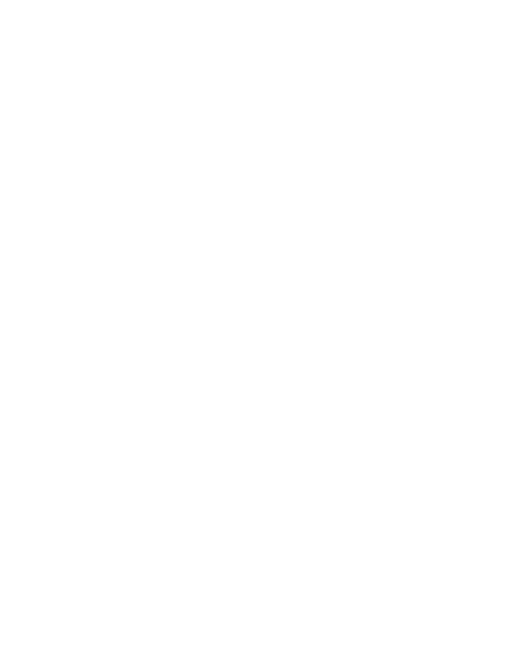 The Digital Walrus - Most Affordable Digital Marketing Agency in Jaipur